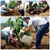 Secretaria de Meio Ambiente de Serrinha realiza limpeza e faz plantio de mudas de Ipê no entorno do cruzeiro do monte. Confira!