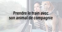 Prendre le train avec son animal de compagnie