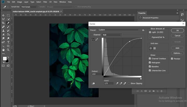 Fitur curves warna pada Photoshop