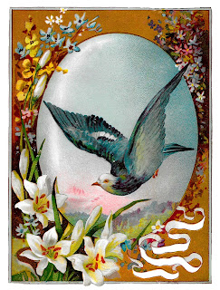 bird dove image greeting printable clipart download vintage artwork
