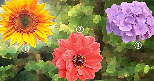 Психологический тест: узнайте, что ваш выбор цветов может рассказать о вас!