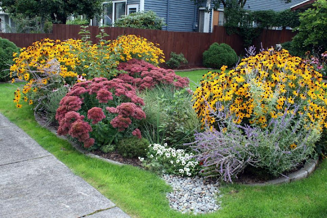 Amazing Rain Garden Design Ideas