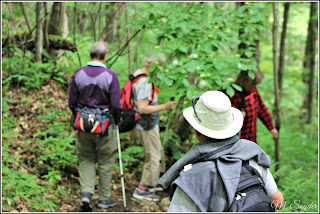 June 17, 2019 Hiking with friends on a trial meant for younger people.