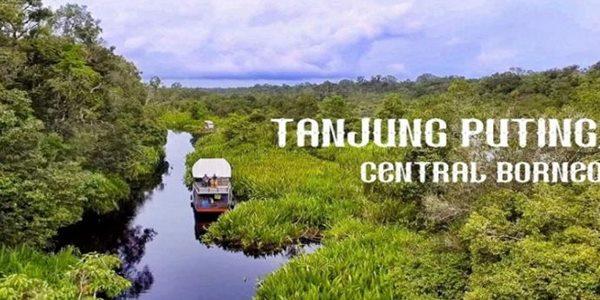 Tempat Tempat Wisata Di Pangkalan Bun Yang Bisa Kita Kunjungi Bersama Keluarga