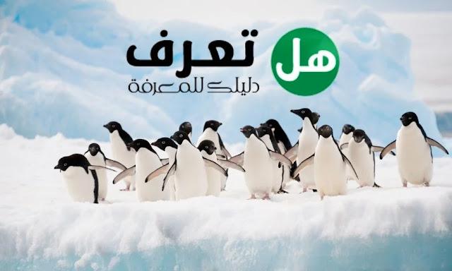 حيوانات القطب الجنوبي