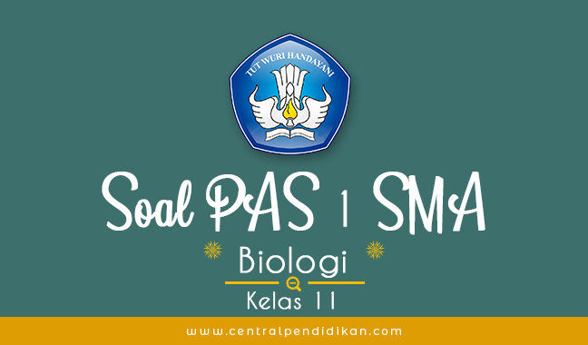 Contoh Soal PAS Biologi Kelas 11 Semester 1