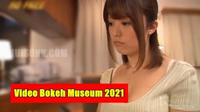 Video Bokeh Museum 2021 Update Terbaru