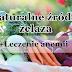 Źródła żelaza na diecie roślinnej | Leczenie anemii +Filmik