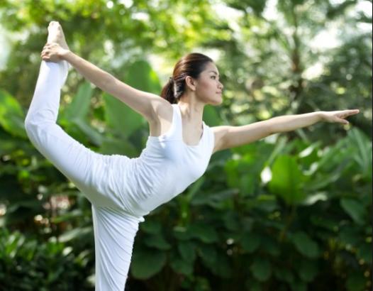 Yogasan Or Pranyam Se Hone Vale Laabh