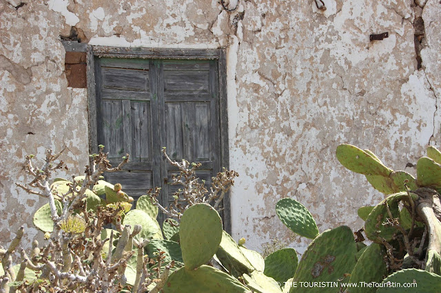 Cactus in front of a weathered white cottage with a wooden antique door.