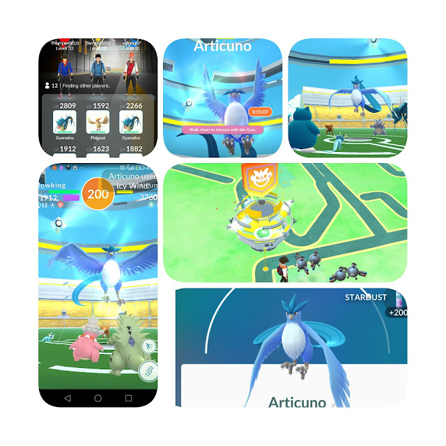 Articuno found and captured at Malaysia