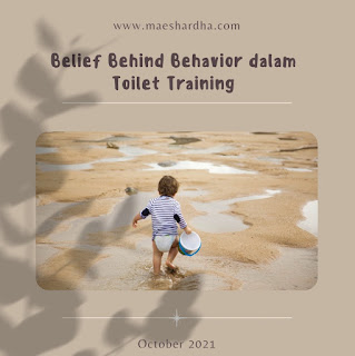 Toilet training cover