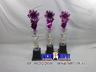 Piala Perlombaan dan Piala Plastik Tulungagung