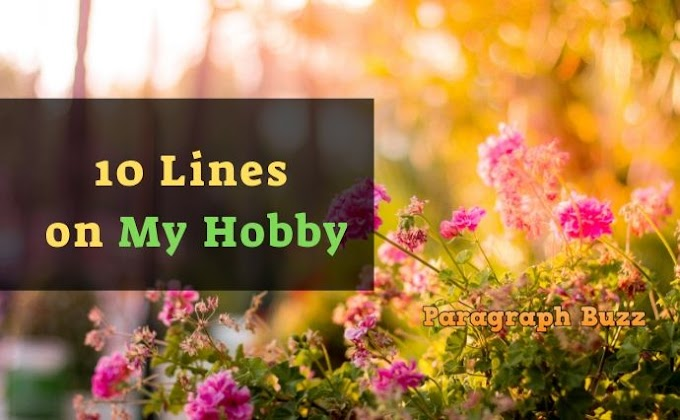 10 Lines on My Hobby in English for All Students