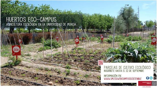 Huertos Eco Campus