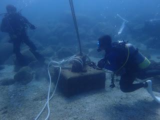 2021年7月20日の柏島ダイビング