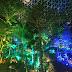Singapura: Bersenang-senang dan Tak Tidur Kemudian Di Changi Airport