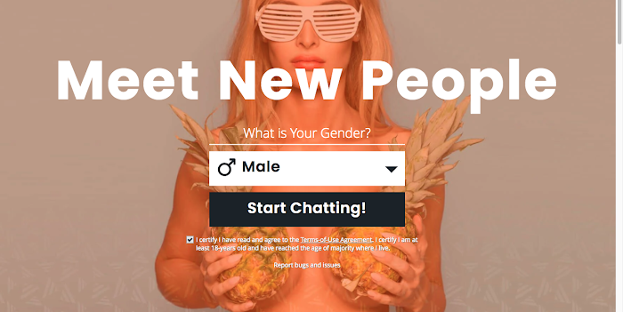 RoleChat Alternatives- The 16 Best Anonymous Chat Sites in 2020