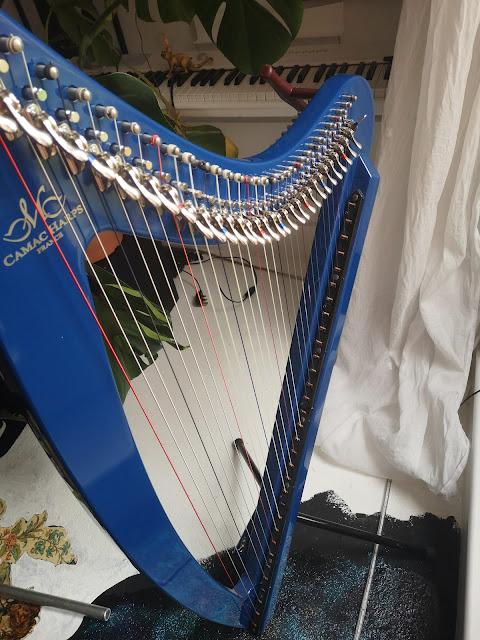 A revamp of the recording studio and a new cello means Sarnia de la Maré id selling the studio harp