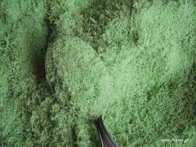οικολογικό εντομοκτόνο