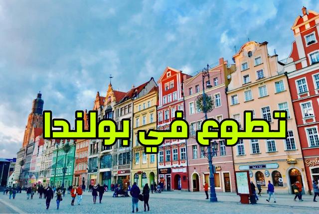 فرصة تطوع في بولندا مع منظمة GOK لتعليم اللغة الانجليزية للمواطنين المحليين