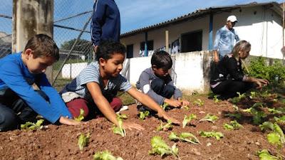 "Fundo Social de Juquiá inicia ""Horta Educativa"" na escola Profª. Lydia Cortez de Aquino"