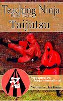 Ninjutsu, ninja, bujinkan, Karate