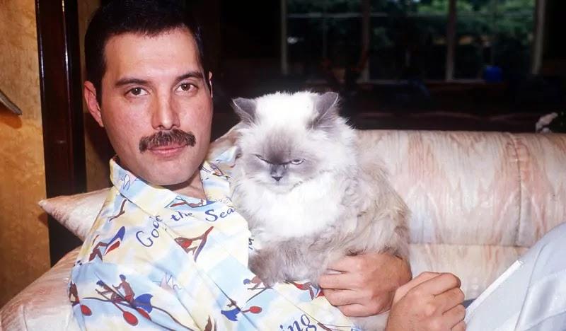 5 Pelajaran Hidup dari Freddie Mercury di Bohemian Rhapsody