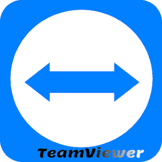 words-soft.com TeamViewer