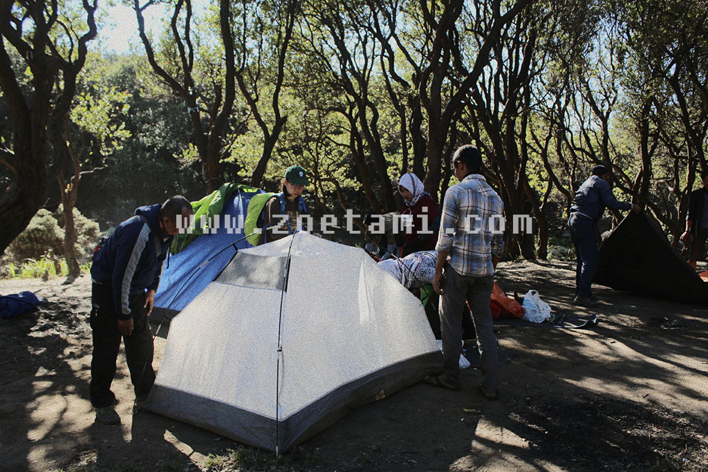 Info Pendakian Gunung Papandayan Paling Update