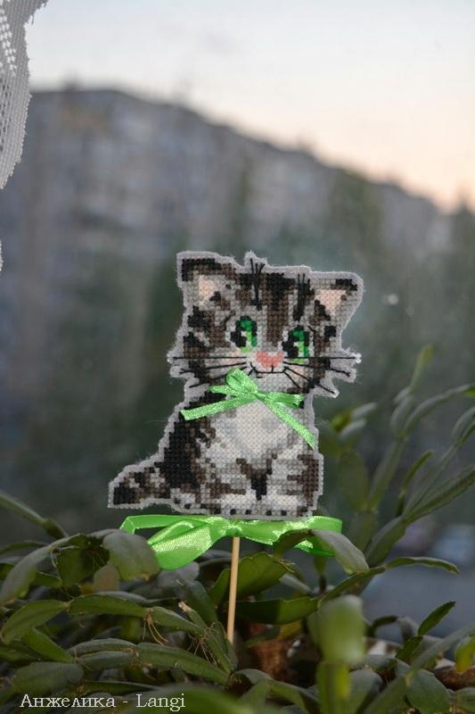 Кот по имени Бантик