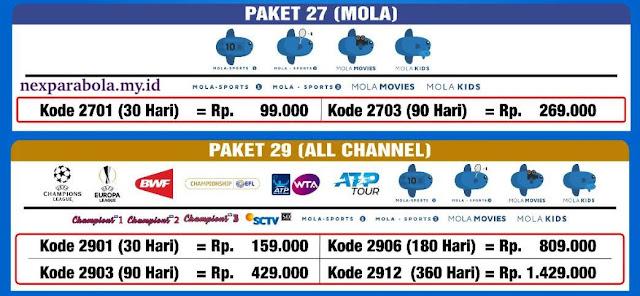 Paket Liga Inggris Mola TV