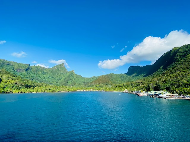 The Best Way To Take A Ferry From Tahiti To Moorea & 2 Best Resorts in Moorea [2021]