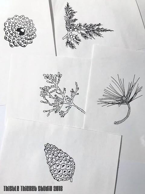 Black & White Sketches By Thistle Thicket Studio. www.thistlethicketstudio.com