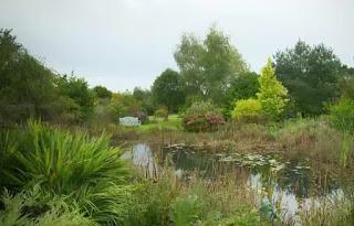 Large pond at River Barn