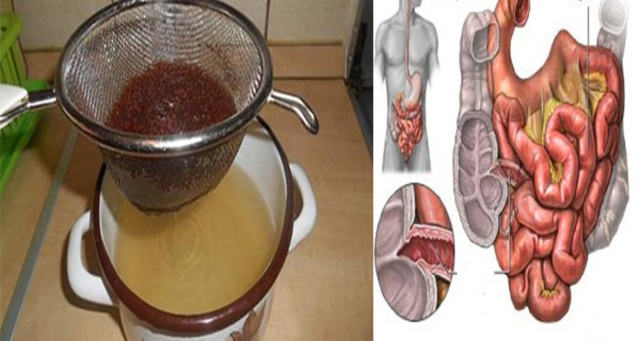 empty-clean-colon-toxins-ingredients