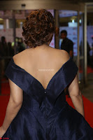 Payal Ghosh aka Harika in Dark Blue Deep Neck Sleeveless Gown at 64th Jio Filmfare Awards South 2017 ~  Exclusive 056.JPG