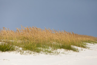 Gulf Shores Condos For Sale at Boardwalk & Regatta
