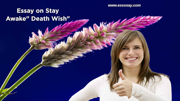 Essay on:  Stay Awake Death Wish - Why It's Dangerous to Have