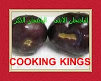 Eggplant female and male eggplant