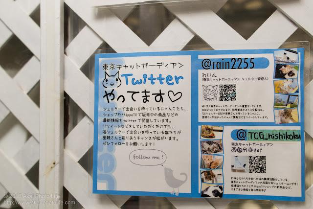 店内に張ってあったTwitterアカウントの告知のポスター