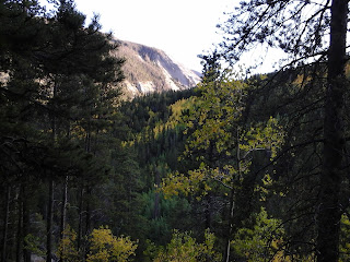 Exterior fall mountain scene with aspen trees turning gold.