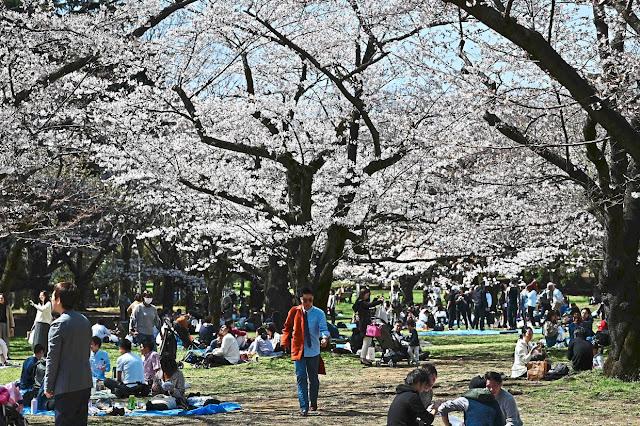Jepun Halang Kemasukan Pelancong 111 Negara Termasuk Malaysia