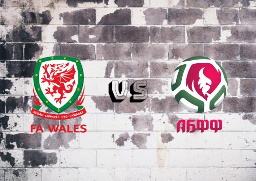 Gales vs Bielorrusia  Resumen