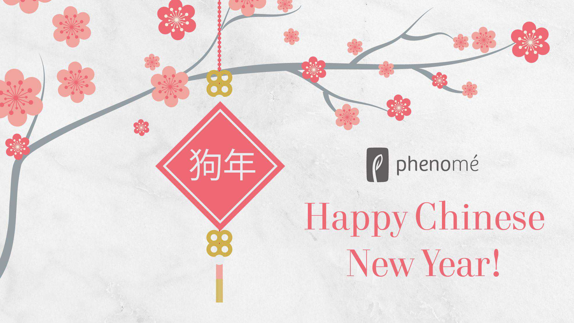 Chinese New Year Wishes Photos