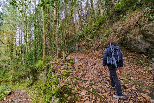 Senderos Os Teixois, Taramundi - Asturias