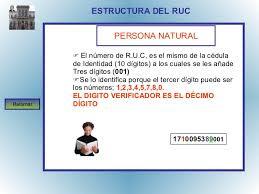 estructura-registro-unico-de-contribuyente-persona-natural