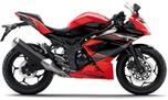 Kawasaki Ninja RR Mono ABS