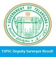 TSPSC Deputy Surveyor Result