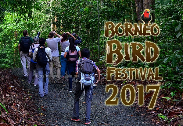 Pesta Burung Borneo 2017